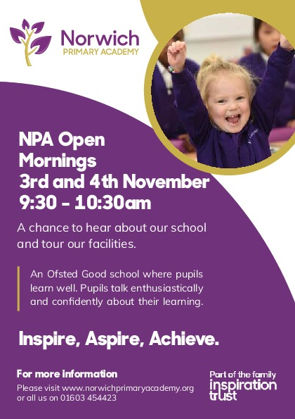 InspirationCurriculumCentre   Norwich Primary Flyers [48196]